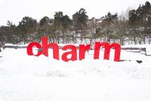 CHARM 2015 Dag 1